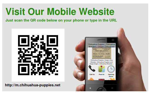 ** Visit our Chihuahua Mobile site! **